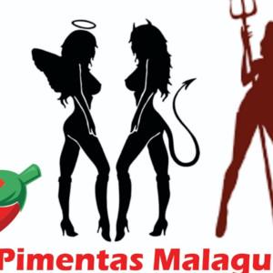Pimentas Malaguetas